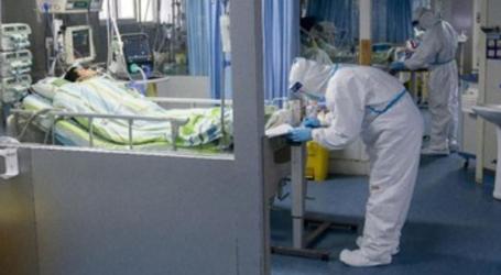 Corona Virus Death Toll Increase to 259 People