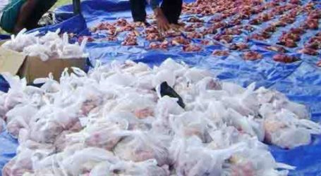 Istiqlal Mosque Uses Environmentally Friendly Plastics for Qurban Meat