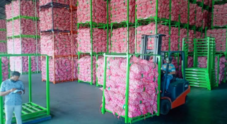 Indonesia Exports 12 Tons of Garlic to Taiwan