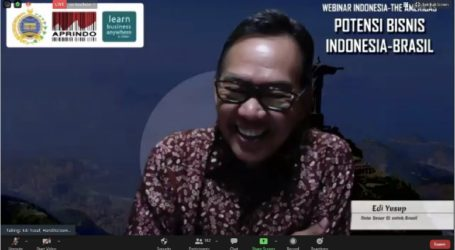 Indonesian Export Products to Brazil Are Very Promising