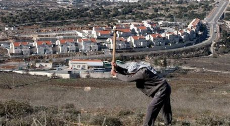 Report: Thousand Illegal Settlements to Build in Palestinian Villages East of Jerusalem