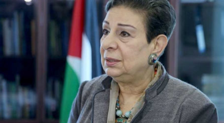 PLO: Normalizing Aggression and Impunity to not Achieve Peace