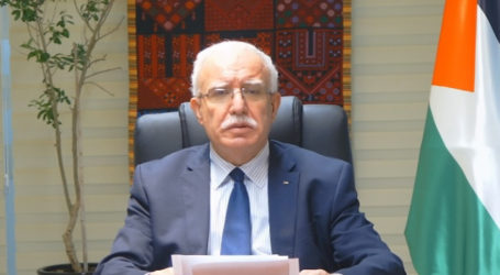 Riyad Al-Maliki: Critical Situation in Palestine Reflects Serious Shortcomings of International System