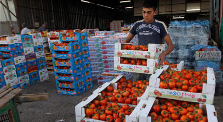 Palestinian Economy Expected to Recover and Grow in 2021