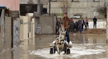 Israel Opens Floodgates, Flooded Palestinian Agricultural Land