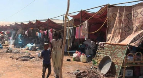 At Least 7.000 Central African Republic Refugees Arrive in Chad