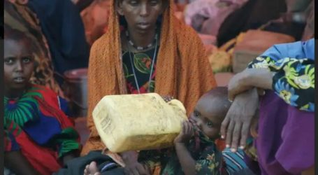 100 Million People in Africa Face Food Insecurity
