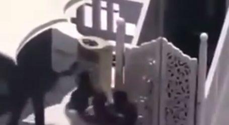 A Man Attacks Imam Friday Prayers at Makkah Grand Mosque