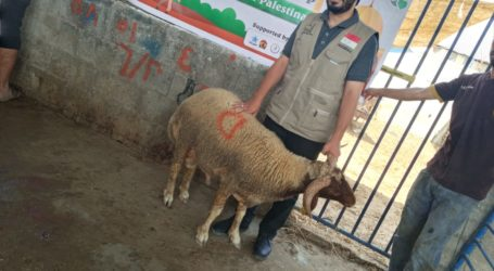 AWG Distributes Qurban Meat to Palestinians in Gaza