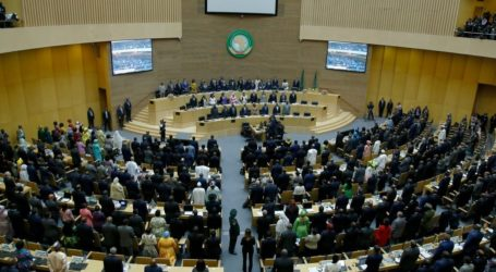 Report: 14 Countries to Form Block Against Israel's Membership of African Union