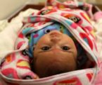 Gaza Witnesses 4012 New Births During Month