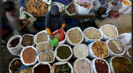Indonesia Promotes Maluku's Spices to the Global Stage