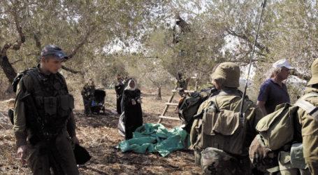 European Union Rejects Israeli Settlers Attacks on Palestinian Farmers