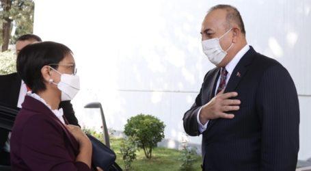 Indonesia, Turkey Urge Solution of Rohingya Issue
